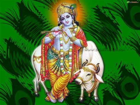 8inch panice size sri gopal oil picture 20