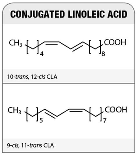 cis-9,trans-11 conjugated linoleic acid oprah picture 1