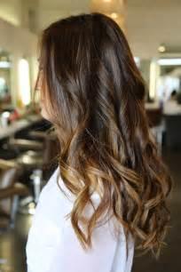 dark brown hair caramel highlights picture 2