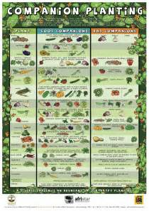 philippine herbal medicine producton data 2013 picture 8