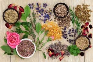 homemade herbal healing remedies picture 22