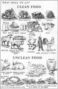 biblical diet picture 18