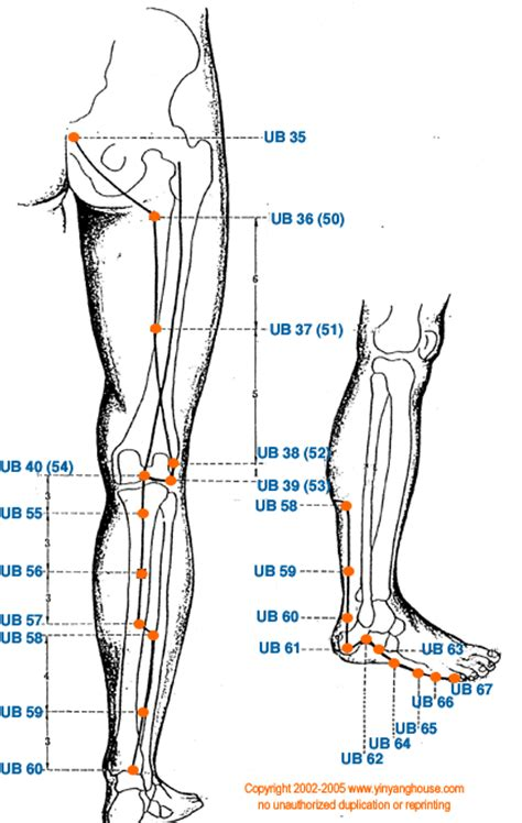 acupressure points for bladder spasms picture 5