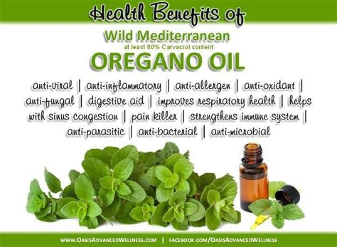 oregano oil benefits and uses for joints picture 7