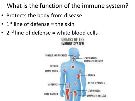 What raises blood pressure picture 18