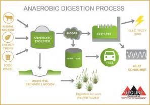 anaerobic digestion picture 1