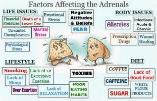 adrenal fatigue tired after picture 6