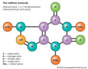 caffeine how to stop blood flow picture 15