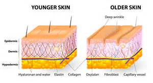 cellulite treatments made of marine alges picture 9