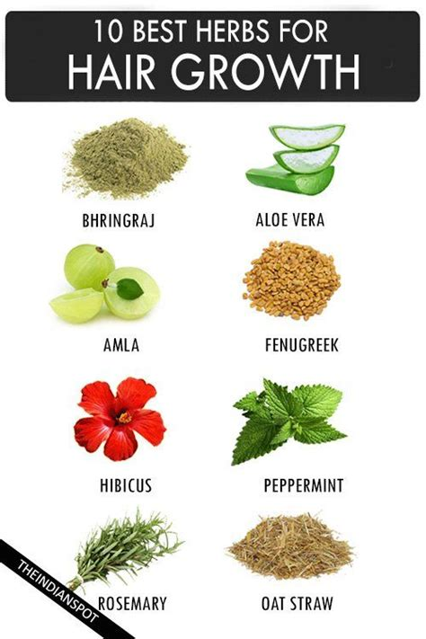 the strongest herbs for a woman to take picture 1