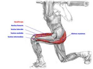 deep muscle to work out focia picture 14