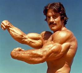 mikes bicep muscle pics picture 1
