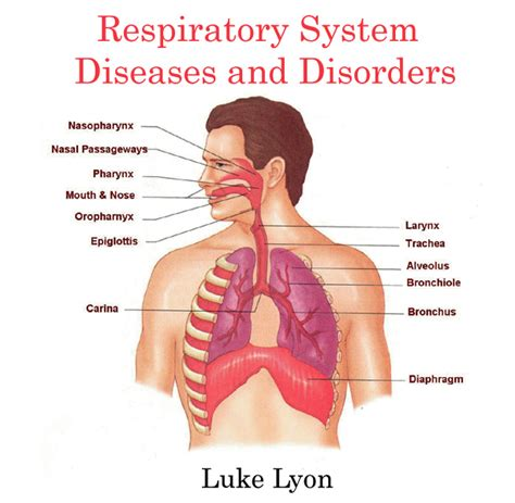 ill workcool that will workbacterial lung infection picture 7