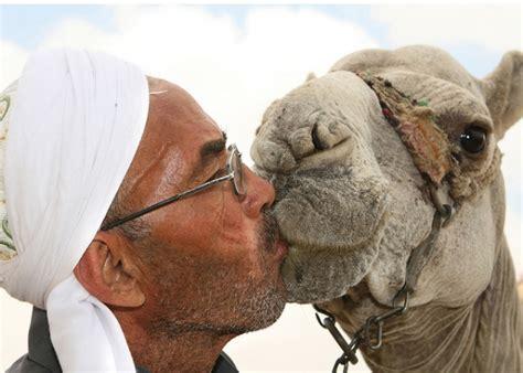 is sex medicine in saudi arabia? picture 3