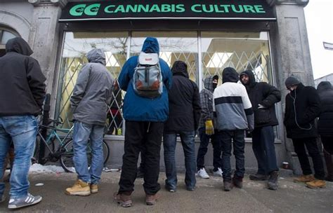 hemp smoke shops montreal quebec picture 11