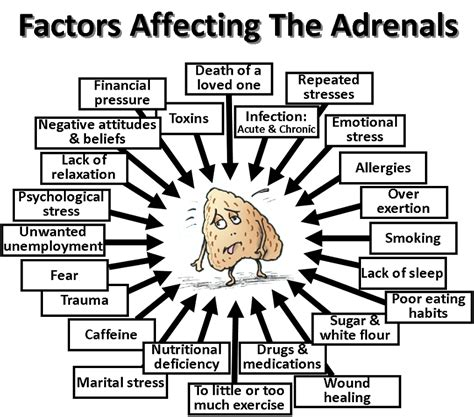 smoking and adrenal fatigue picture 17