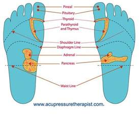 sexual reflexology picture 1