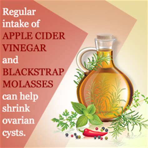 apple cider vinegar for cysis in cats picture 8