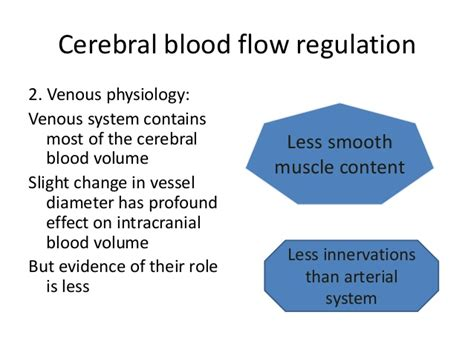 cerebral blood flow picture 13