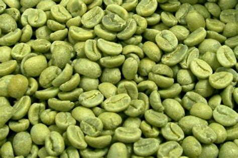 green coffee bean extract picture 7