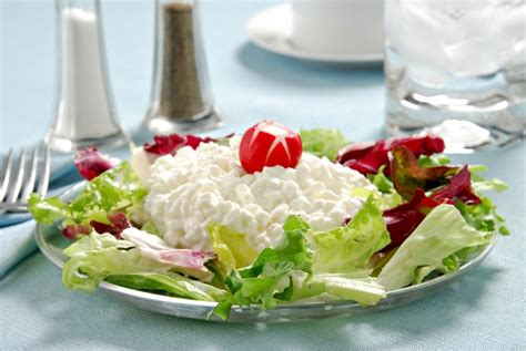 cottage cheese - good for diet picture 13