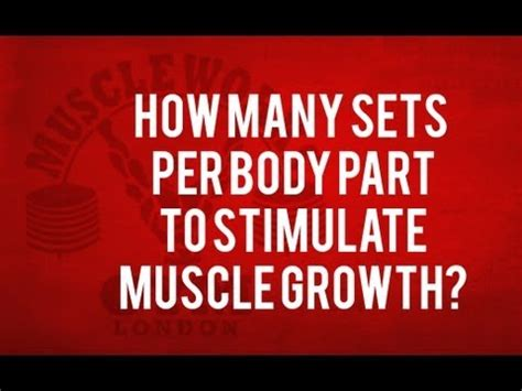 how many sets and reps to rip muscle picture 6