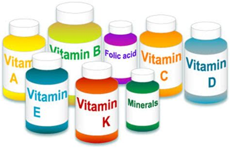 cellulite supplements picture 11