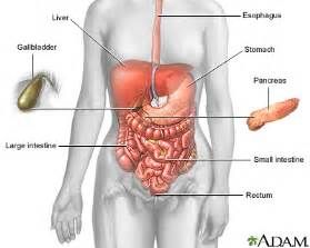 stomach virus pa 2014 picture 7