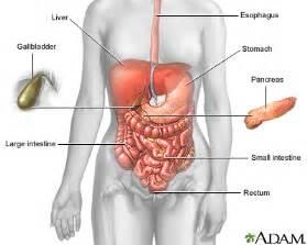 panka blood tests for inflammatory el disease picture 18