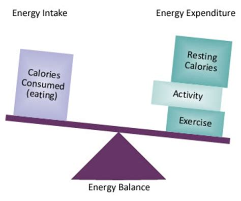 negative calorie diet picture 2