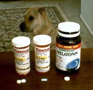 anti depression medications precribed for weight loss picture 9