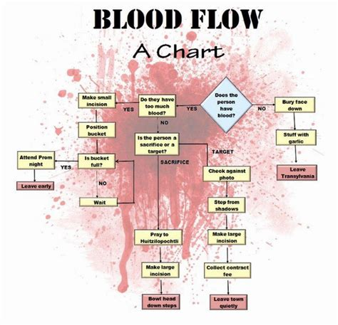 flowchart of blood circulation picture 7