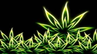 dandelion weeder picture 6