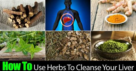how to use boli cleanse and detox picture 1