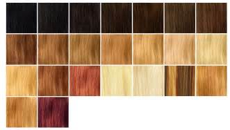 hair coloring chart picture 13