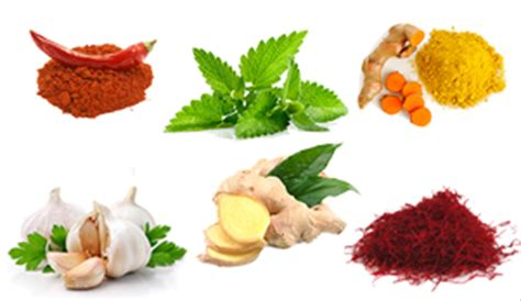 Cholesterol herb lower picture 14