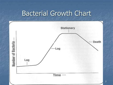 bacterial growth chart picture 1