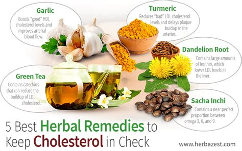 cholesterol folk treatments picture 1