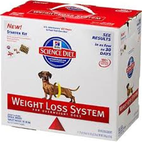 fast weight loss system picture 1