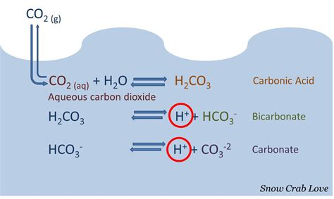 calcium carbonate does it away at h picture 4