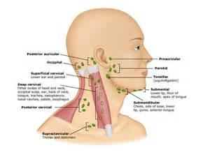 autoimmune axillary pain picture 6