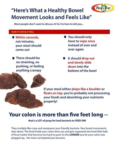 what should a normal bowel movement look like picture 1