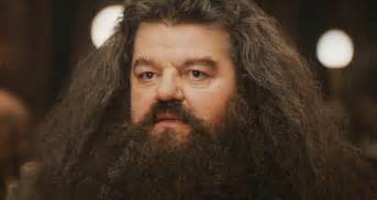 hairy chubby men list picture 11