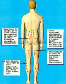 acupressure points for pelvic muscle spasms picture 9