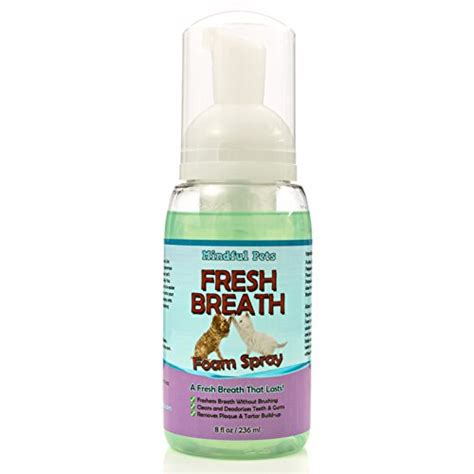 herbal tooth paste for bad breath due to plaque build up picture 11