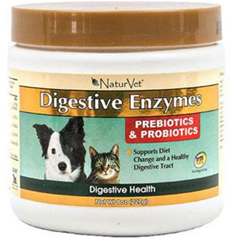 canine probiotics picture 2
