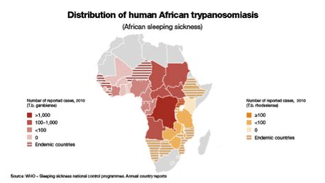 african sleeping sickness picture 3