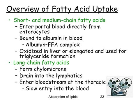 what is effect of redox fat picture 8