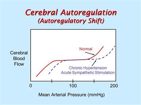 cerebral blood flow autoregulation picture 7