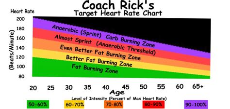 Heart rate fat burning zone picture 10
